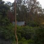 utsikt från södra vindsrummet