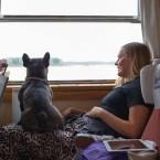 Valter fick kompis på tåget