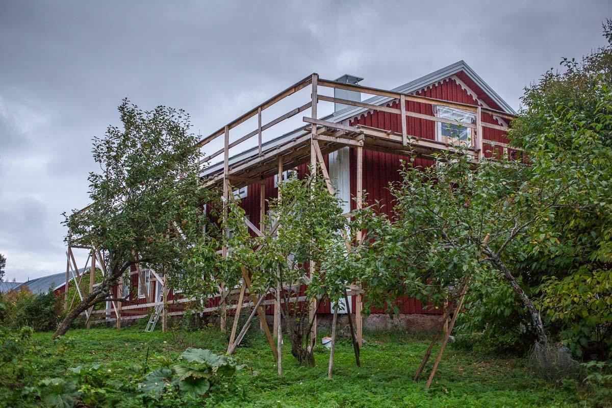 Huset och äppelträden