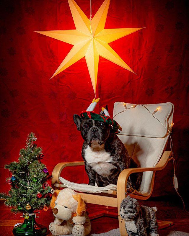 God jul. #valpr